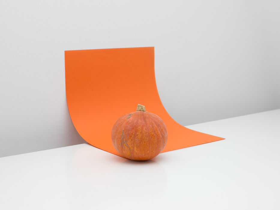 Pumpkins, 2014 / Laura San Segundo