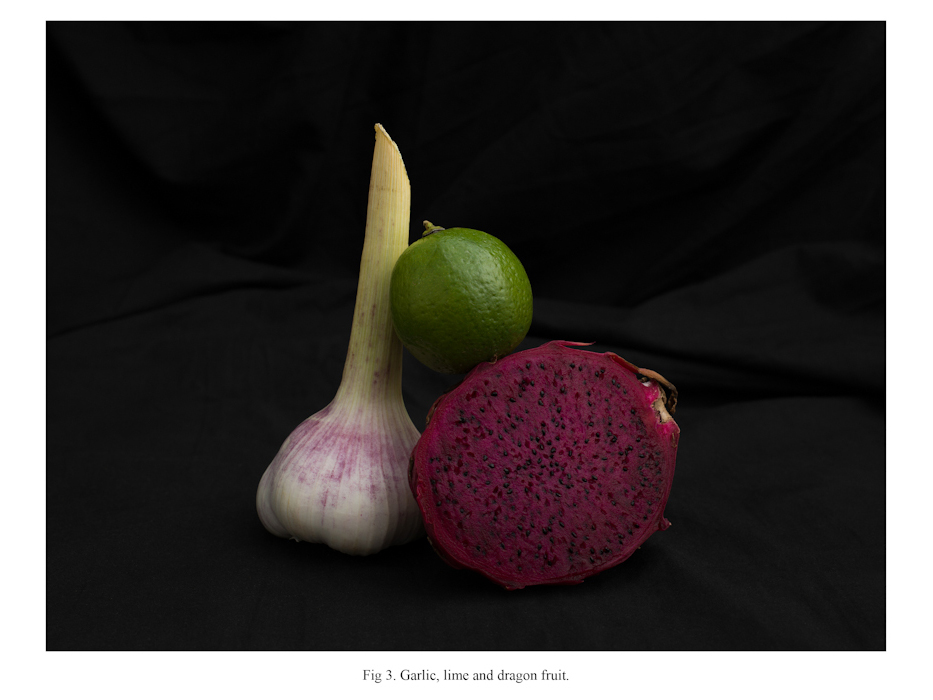 Photographs with vegetables, 2014