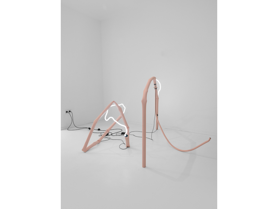 Studio Lacube, Untitled Pink I and II / Laura San Segundo
